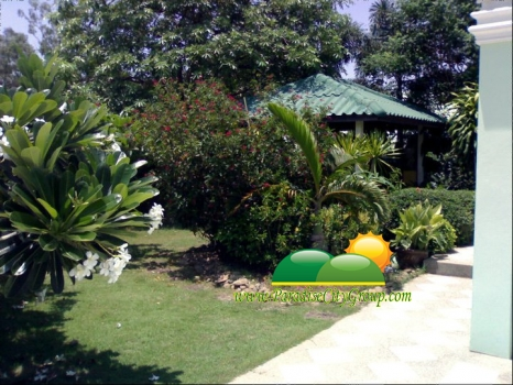 house-for-sale-at-tippawan-project-8